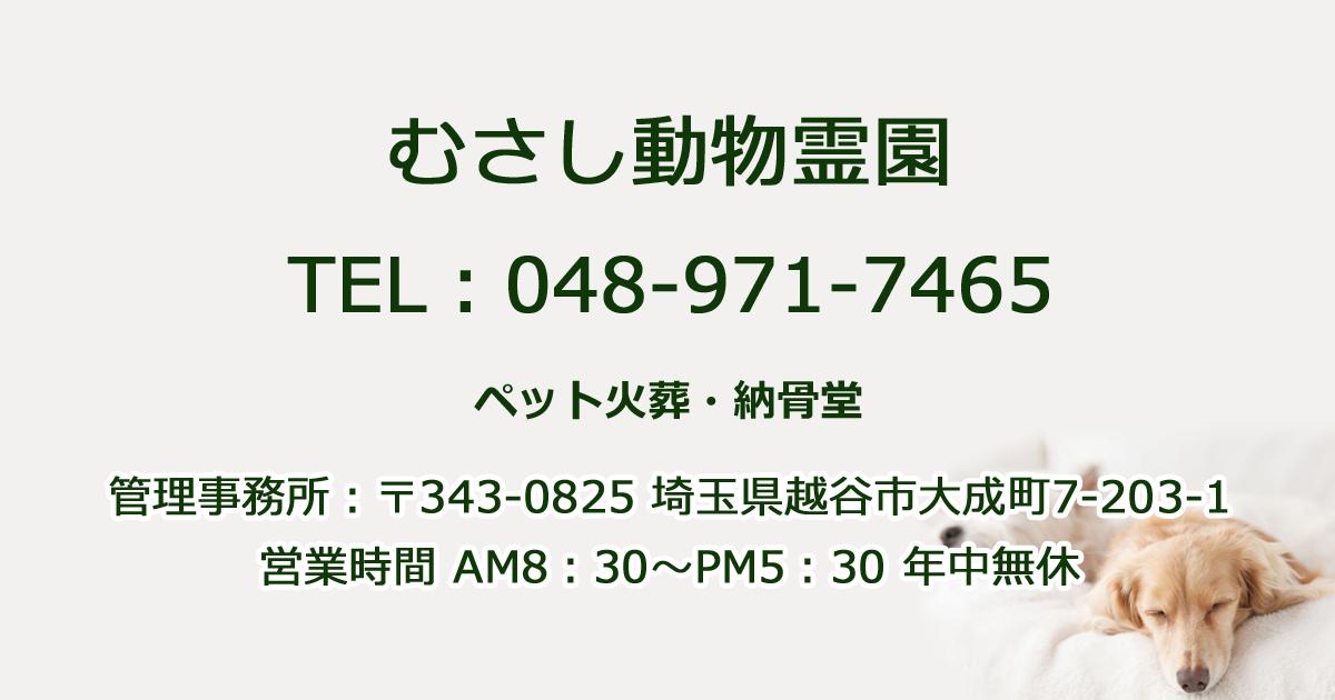 埼玉県草加市のペット火葬・ペット葬儀業者一覧| …